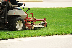 trust our experienced staff for expert lawn care in tampa fl
